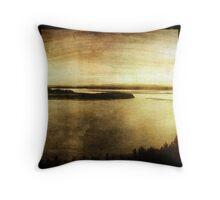 Yukon Flats Throw Pillow