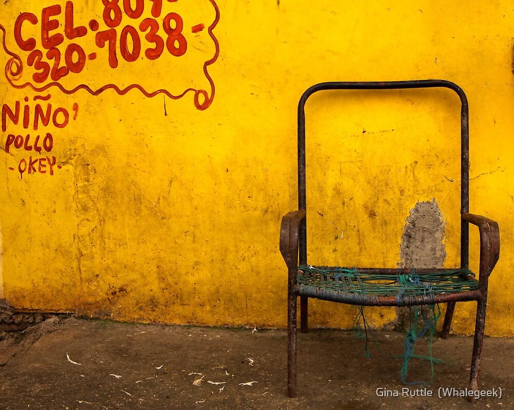 Derelict Still Life by Gina Ruttle  (Whalegeek)