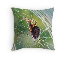 Web Spinner Throw Pillow
