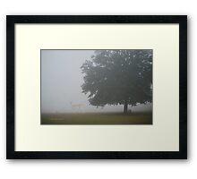 Foggy Country Morning Framed Print