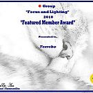 Featured Member Award by terrebo