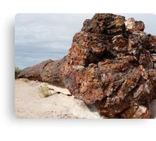 Petrified Forest National Park- Arizona Canvas Print