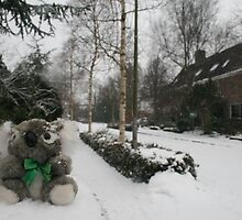 I can't BEAR this cold weather!! by MrJoop