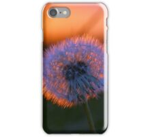 Shades of the Sunset iPhone Case/Skin