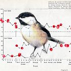Chickadee and Berries by paulapaints