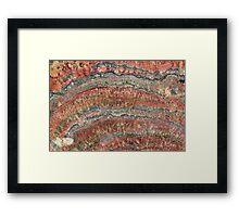 Fossilized Stromatolites Framed Print
