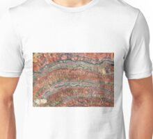Fossilized Stromatolites Unisex T-Shirt