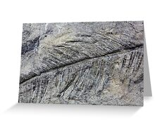 Fossil Plant Greeting Card