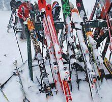 Ski Break by Andrel Reid