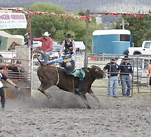 On the way out, Woodstock Rodeo Tasmania by PaulWJewell
