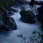 Fluidity by Jon Taylor
