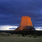 Devils Tower #3 by Mike Norton