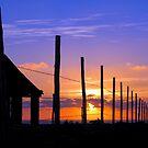 Baja Pacific Ocean Sunset by Mark Ramstead