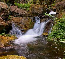 Jenolan Cascades by Andi Surjanto