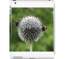 Macro Bumble Bees iPad Case/Skin