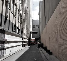 Loading Zone by Stephanie Stengel | stelonature photography