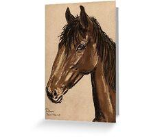 Equine Stud Greeting Card