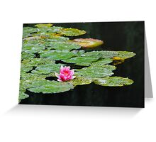 Water Lily - Giverny, France Greeting Card