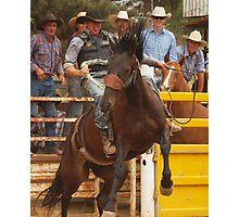 Bronco Rider  Taralga NSW Photographic Print