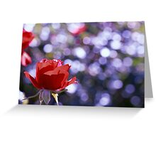 It is the time you have spent on your rose that makes your rose so important. Greeting Card