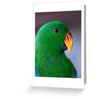 Zulu - eclectus parrot Greeting Card