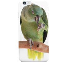 Parrot eating peanut iPhone Case/Skin