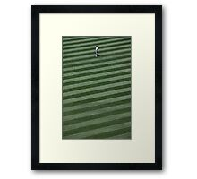 Yankee in the Outfield (California) Framed Print