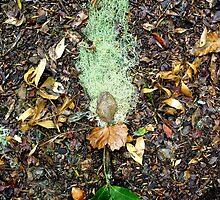Forest sprite by Amanda Gazidis
