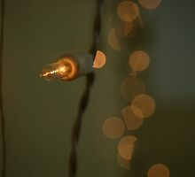 Fairy Lights with Big Bokeh by rjmp