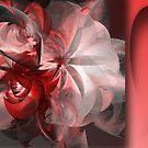 Healing Red by Ineke-2010