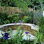 Demelza Garden, Chelsea Flower Show 2009 by BronReid