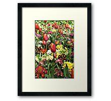 Tulips in Spring Framed Print