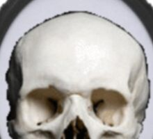 Framed Skull Sticker