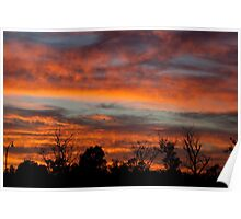 February Dawn Sky Poster