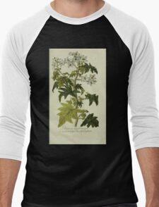 Plantarum Indigenarum et Exoticarum - Lukas Hochenleitter und Kompagnie 1788 - 360 Men's Baseball ¾ T-Shirt