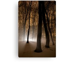 Mysterious Light Canvas Print