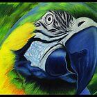 Parrot by artbyalycia