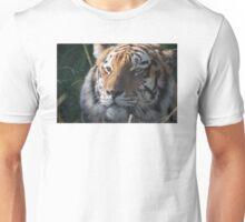 Tiger Tiger Unisex T-Shirt