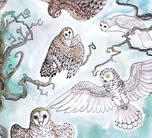 Owls by Rainbow Foxes