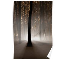 Mysterious Light II Poster