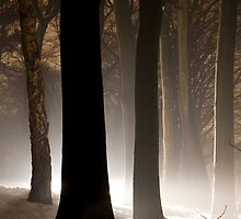 Mysterious Light III by Joop Snijder