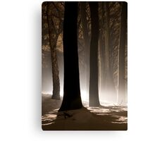 Mysterious Light III Canvas Print