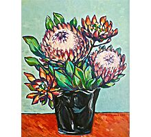 Proteas. Oil on canvas.  2012Ⓒ  Photographic Print
