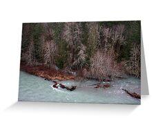 tributaries Cowichan River Greeting Card