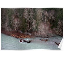 tributaries Cowichan River Poster