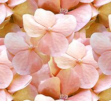Innocence baby pink hydrangea floral pattern by Glimmersmith