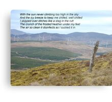 Donegal Disinfectant at Work Metal Print