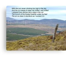 Donegal Disinfectant at Work Canvas Print