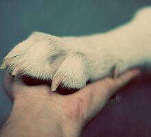 Friendship by Silivrenwolf