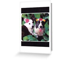 Corgilicious Greeting Card